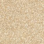 Caspian Twist Barley